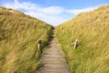 Boardwalk through Grass Covered Dunes, Amrum, Schleswig-Holstein, Germany Photographic Print by F. Lukasseck