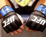 UFC Fight Night: Hunt V Nelson Photo af Mike Roach/Zuffa LLC