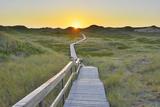 Wooden Walkway through Dunes Photographic Print by Raimund Linke