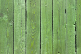 The Green Wood Texture with Natural Patterns Photographic Print by  Madredus