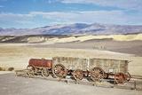 Twenty Mule Wagon in Death Valley Photographic Print by Bryan Mullennix