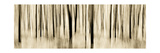 Mystic Forest 1252 Panoramic Papier Photo par Rica Belna