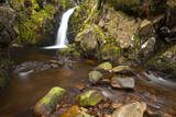 Harthope Linn, Harthope Valley, Northumberland National Park, Northumberland, England Photographic Print by Jason Friend