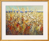 Field of Spring Flowers II Framed Giclee Print by Tim O'toole