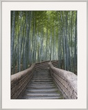 Stairway Through Bamboo Grove Above Adashino Nembutsu-Ji Temple Framed Photographic Print by Brent Winebrenner