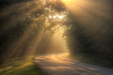 Morning Rays on Rural Road Photographic Print by Malcolm MacGregor