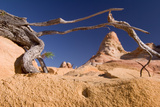 Coyote Buttes Iii: Framed Photographic Print by Daniel Cummins