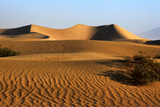 Sand Dunes Photographic Print by David Toussaint