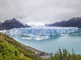 Perrito Moreno Glacier. Photographic Print by David Madison