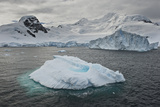 Antarctic Peninsula, Antarctica Photographic Print by Enrique R. Aguirre Aves