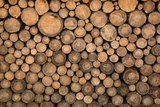 Big Wall of Stacked Wood Logs Showing Natural Discoloration Photographic Print by  badboo