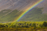 Rainbow near Rio Blanco below Fitzroy Massif. Photographic Print by David Madison