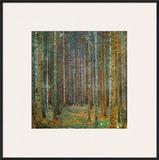 Tannenwald (Pine Forest), c.1902 Framed Giclee Print by Gustav Klimt