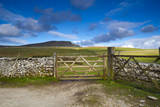 Gates to Farm Field and Pen-Y-Ghent in Distance, Yorkshire Dales National Park, North Yorkshire, En Photographic Print by Jason Friend