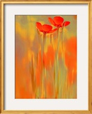 Because of You 1 Framed Photographic Print by Philippe Sainte-Laudy