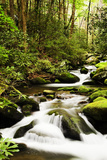Roaring Fork in the Great Smoky Mountains Photographic Print by Dennis Flaherty