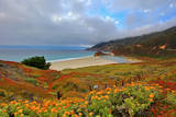 Pacific Coast Highway and Little Sur River Photographic Print by David Toussaint