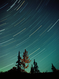 Star Trails at Night Photographic Print by Joao Canziani