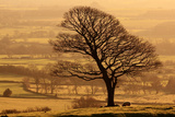 Englands Green and Pleasant Land Photographic Print by Paul Baggaley
