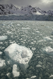 Twitcher Glacier, Floating Ice and Sea Photographic Print by Eastcott Momatiuk
