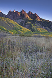 Mountain and Autumn Leaves, Maroon Bells, Aspen, Colorado, United States Photographic Print by David Henderson