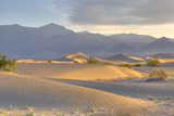 Desert Dawn Photographic Print by Photo by John Rice