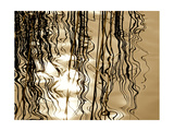 Reeds 8169 Photographie par Rica Belna