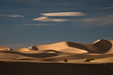 Sand Dunes Photographic Print by Alice Cahill