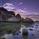 Sea Moss on Coral Rocks at Sunrise Photographic Print by  AndreLuu
