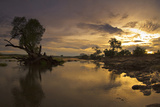Sunrise, Zambezi National Park, Zambia Photographic Print by Thomas Varley