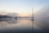 Foggy Morning on Lake Macquarie Photographic Print by Coal Pointer Images