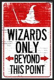 Wizards Only Beyond This Point Sign Poster Photo