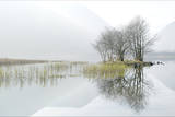 Misty Lake Photographic Print by Terry Roberts Photography
