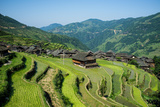 Chinese Miao Village in the Rice Terraces,Guizhou Photographic Print by  wulingyun