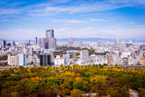 Osaka Cityscape Photographic Print by Suphat Bhandharangsri Photography
