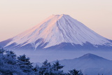 Mt.Fuji Photographic Print by  huayang