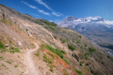 Trail on Hillside at Mount St. Helens Photographic Print by Danielle D. Hughson