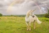 Epic Unicorn in Field with Rainbow and Lightning Photographic Print by  PraxisPhotography