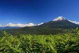 A Fine View of Mount Fuji from Mount Ryugatake Photographic Print by  Satoson