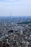 Aerial View toward Tokyo Skytree Photographic Print by  DigiPub