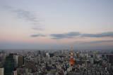 Tokyo Skyline Photographic Print by Celine Ramoni