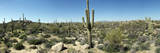 Arizona Desert, Panorama Photographic Print by Shan Shui