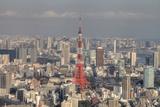 Tokyo Tower from Roppongi Hills Photographic Print by Motonori Ando
