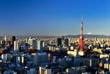 Aerial View of Tokyo's Downtown Photographic Print by vladimir zakharov
