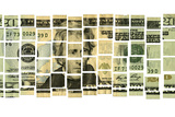 US Twenty Dollar Bill in Pieces Photographic Print by Thomas J Peterson