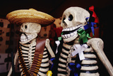 Day of the Dead Skeleton Figures Photographic Print by Danny Lehman