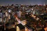 Tokyo Cityscape at Night Photographic Print by vladimir zakharov