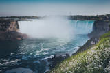 Niagara Falls with Flower and Dandelion Photographic Print by  d3sign