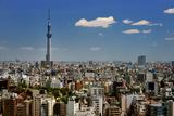 Tokyo View Photographic Print by vladimir zakharov