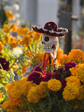 Day of the Dead Decorations Photographic Print by Craig Lovell